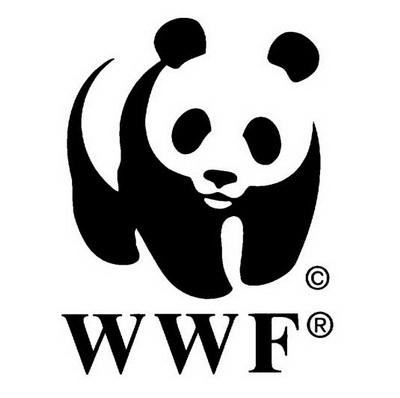 dizajn-logoa-panda