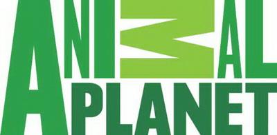 logo Animal Planet