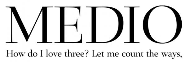 logo-dizajn-serifnifontovi9
